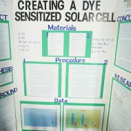 Dye-Sensitized Solar Cel